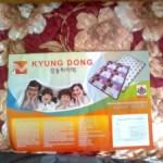kyungdong